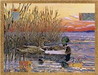 Mallards at Dawn Fine-Art Print