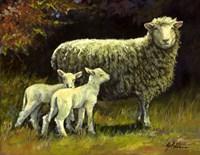 Mothers Day Fine-Art Print