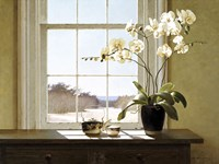 Orchids In The Window 2 Fine-Art Print