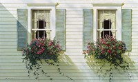 Windows With Flowerboxes Fine-Art Print