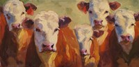 Party of Five Herefords Fine-Art Print