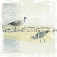 Coastal Birds I Fine-Art Print
