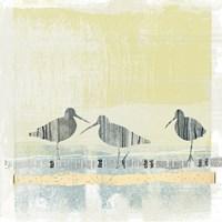 Coastal Birds II Fine-Art Print