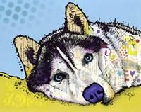 Siberian Husky 2 Fine-Art Print