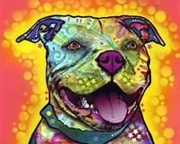 Dewey Pit Bull Fine-Art Print