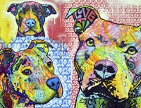 Thoughtful Pit Bull This Years Love 2013 Part 3 Fine-Art Print