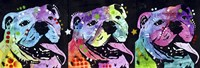 3 Bulldogs Fine-Art Print