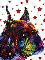Profile Boxer 2 Fine-Art Print