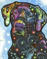 Dog on Blue Fine-Art Print