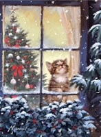 Kitten And Snow Fine-Art Print