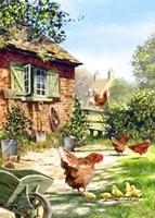 Chicken And Hens Fine-Art Print