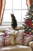 Cat on Chair Fine-Art Print