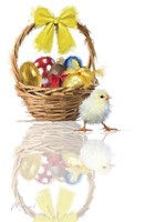 Easter Chick Fine-Art Print