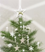 Christmas Star Fine-Art Print