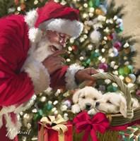 Santa And Puppies Fine-Art Print