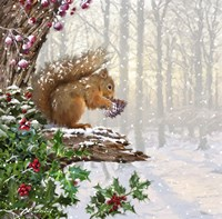 Christmas Squirrel Fine-Art Print