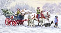 Pony Ride Fine-Art Print