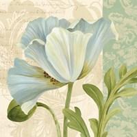Pastel Poppies IV Framed Print