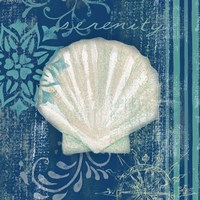 Navy Blue Spa Shells III Fine-Art Print