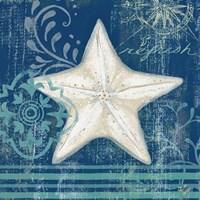 Navy Blue Spa Shells IV Fine-Art Print