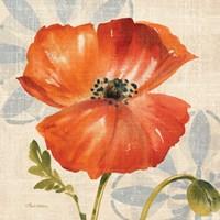 Watercolor Poppies I (Orange) Fine-Art Print