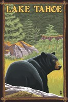 Lake Tahoe Bear Fine-Art Print