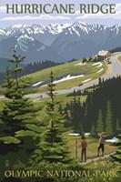 Hurricane Ridge Olympic Park Fine-Art Print