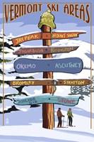 Vermont Ski Areas Signs Fine-Art Print