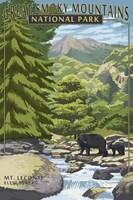 Great Smoky Mountains Park Fine-Art Print