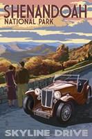 Skyline Drive Shenandoah Park Fine-Art Print