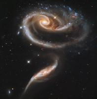 "A """"Rose"""" Made of Galaxies Highlights Hubble's 21st Anniversary Fine-Art Print"