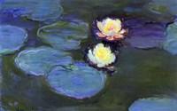 Water Lily Detail Blur Fine-Art Print