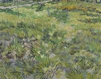 Long Grass With Butterflies Fine-Art Print