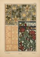 Plate 12 - Columbine Fine-Art Print
