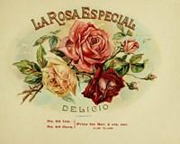 La Rosa Fine-Art Print