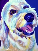 Goldendoodle Penny Fine-Art Print