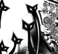 Black Cats Fine-Art Print