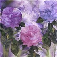 Purple Dream III Fine-Art Print