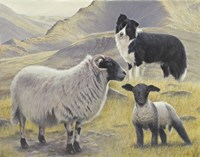 Tending the Sheep Fine-Art Print
