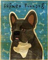 French French Bulldog - Black Brindle and White Fine-Art Print