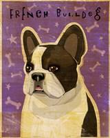 French Bulldog - Whiten Brindle Fine-Art Print