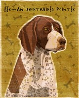 German Shorthaired Pointer Fine-Art Print