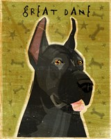 Great Dane 3 Fine-Art Print