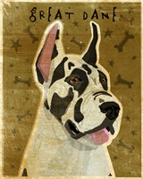 Harlequin Great Dane 1 Fine-Art Print