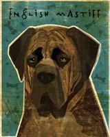 English Mastiff - Brindle Fine-Art Print