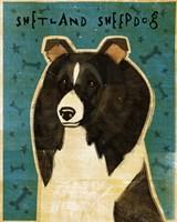 Shetland Sheepdog - Black and White Fine-Art Print