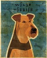 Welsh Terrier Fine-Art Print