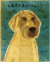 Yellow Labradoodle Fine-Art Print