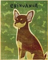 Chihuahua (chocolate and tan) Fine-Art Print