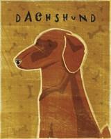 Dachshund (red) Fine-Art Print